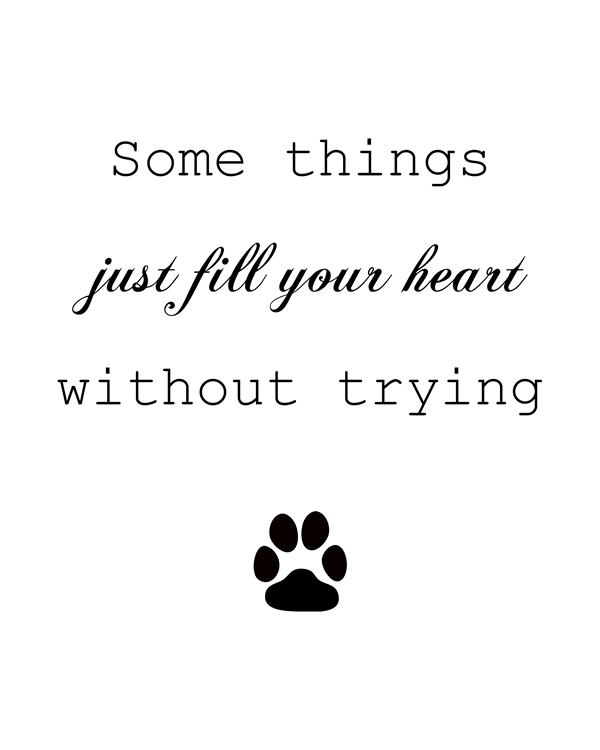 Some Things Just Fill Your Heart Without Trying. Inspiring quote are the new hot trend for home decor right now. Check any home decor magazine and you will most diffidently find wall art of some kind. Dog Wall Decal, Dog Lover Gift Idea, Dog Decor, Pet Quote, Cat Lover || 8x10 inches (HD pdf)