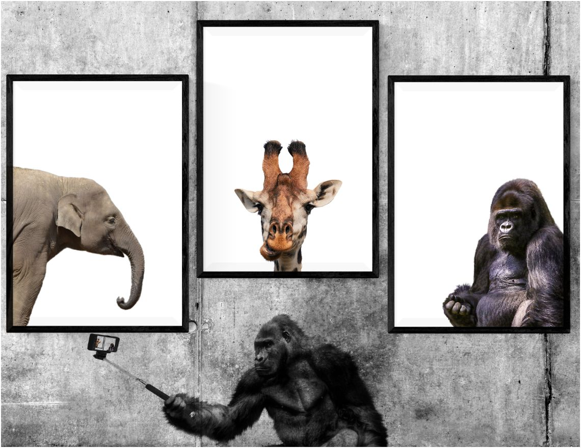 printable Animals Selfie at Museum